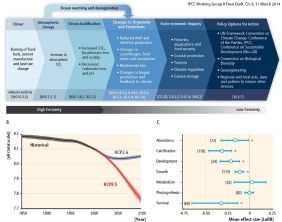 Figure from Chapter 6 of the latest IPCC Working Group II, presented in Yokohama, Japan, on 31 March 2014.